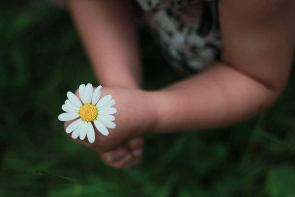 mita-tehda-lapsen-kanssa-helsingissa-keravankartano-goodmoodkahvila